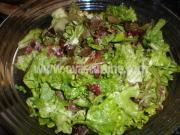 salata01